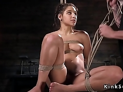Sexy slave in lingerie tied up in ropes