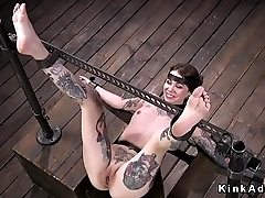 Alt shaved pussy brunette gets whipped